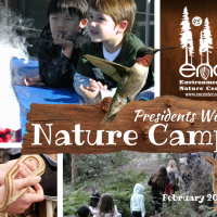 primary-President-s-Day-Camp-at-the-ENC-1486068705