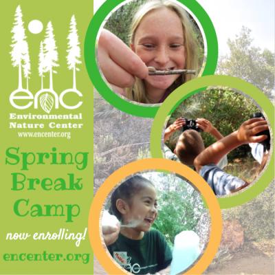 Spring Break Camp –– ENC