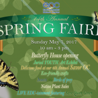 primary-Spring-Faire-2017-1489181139