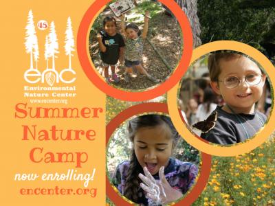 Summer Nature Camp