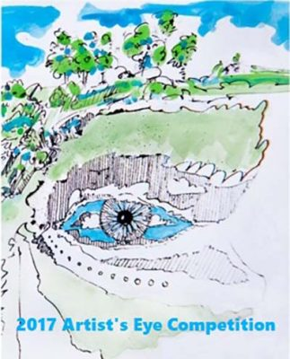 2017 Artist's Eye Competition Opening Reception