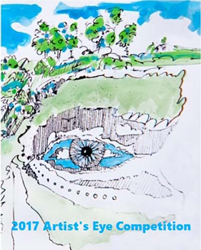 2017 Artist S Eye Competition Opening Reception Sparkoc