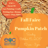 Fall Faire & Pumpkin Patch
