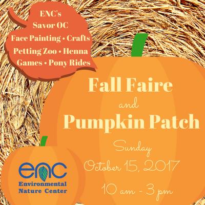 Fall Faire & Pumpkin Patch