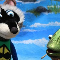 Casa Kids: Swazzle: Ricky Raccoon and the Green Ra...
