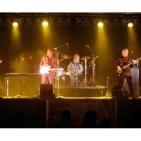 Newport Beach Concerts on the Green: Desperado