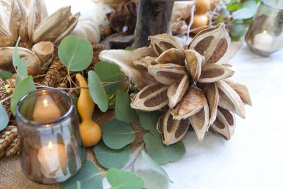 Molly Wood's Harvest to Holiday Workshop
