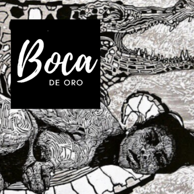3rd Annual Boca De Oro Festival of Literary Arts &...