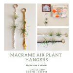 Macrame Air Plant Hangers