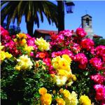 Mission San Juan Capistrano Garden Tours