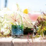 Casa Wellness: Botanical Cocktails Class