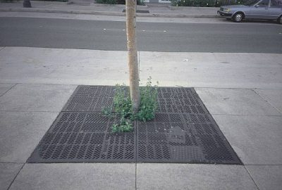 City Map Tree Grates