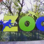 View the Santa Ana Zoo