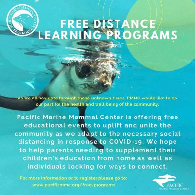 Free Webinars with Pacific Marine Mammal Center