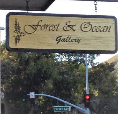 Virtual Art Tour:  Forest & Ocean Gallery