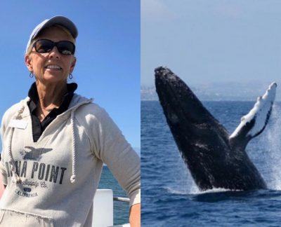 Explore the Ocean with Dana Wharf