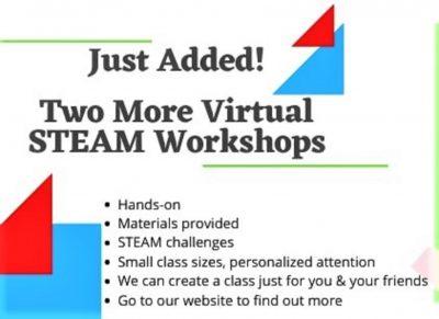 NEW!  Virtual S.T.E.A.M. Summer Classes
