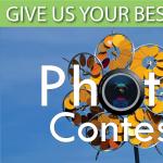 Sculpture Photo Contest - Newport Beach