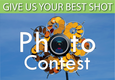 Sculpture Photo Contest - Newport Beach