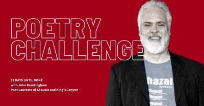Poetry Challenge - 31 Days Until Done