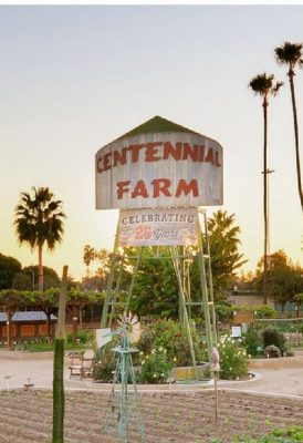 TEMPORARILY CLOSED: Centennial Farm at OC Fair Eve...