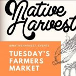 DTSA Farmers Market - Native Harvest
