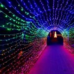 Nights of 1000 Lights @ Sherman Gardens