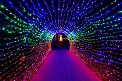 SOLD OUT:  Nights of 1000 Lights @ Sherman Gardens