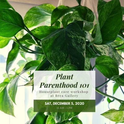 Online:  Plant Parenthood 101