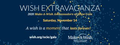 Virtual 2020 Make-A-Wish Ambassadors of Hope Gala