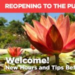 Mission San Juan Capistrano Reopens