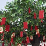 Virtual Wishing Tree