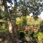 Virtual Newport Beach Garden Tour
