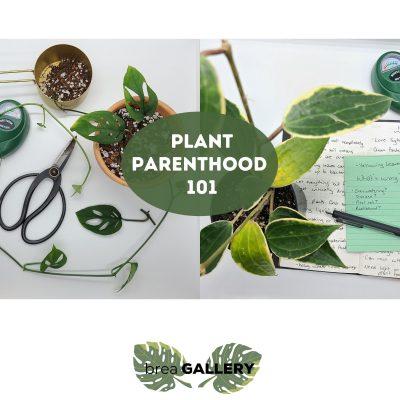 Plant Parenthood 101