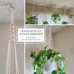 Macrame Plant Hangers Workshop