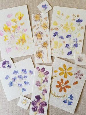 Flower Printmaking at Sherman Gardens