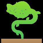 Carnivorous Plant Show & Sale