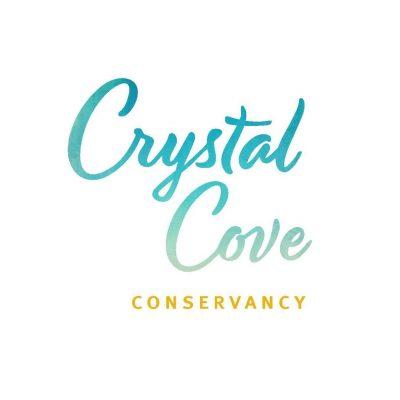 Webinar for Educators:  Project Crystal