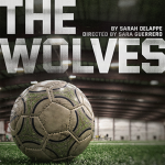 CSUF: The Wolves