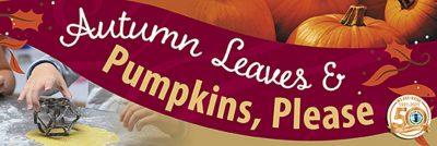 Irvine:  Autumn Leaves and Pumpkins