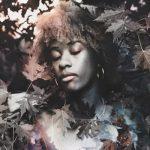 Digital Art, Assemblage or Collage
