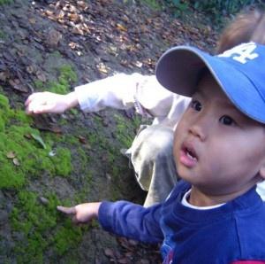 Little Naturalists: Summer FlutterBYEs