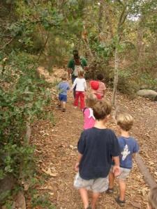 Little Naturalists: Fabulous Fall!