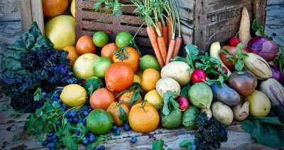 My Edible Garden Series | What to do in December with Steve Hampson