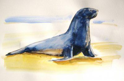 View Sea Lions, Make Art! Laguna Beach
