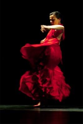 Soledad Barrio & Noche Flamenca