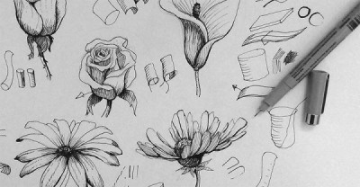 Journal your Garden through Art | Drawing Leaves and Flowers in the Garden