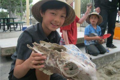 Jr. Archaeology - Native American Dig