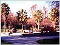 Oso Viejo Park