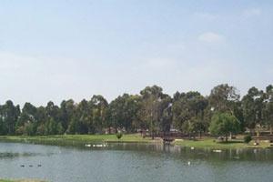 Tri-City Park
